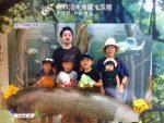 家族みんなが好きな水族館を楽しむ夏休み2日目。