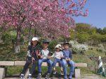チューリップが満開の国営備北丘陵公園に家族で行ってきた休日。