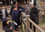 家族みんなが大好きな動物園に行ってきた話(福山市立動物園編)