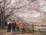 【竹原】家族でお出掛け『ピースリーホームバンブー総合公園』でお花見した休日