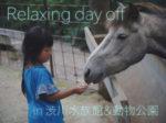 とある日の我が家の夏休み/Relaxing day off in 渋川マリン水族館と動物公園